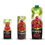 Cappy Vişne Nektarı İçindekiler, Kalori, Besin Öğeleri